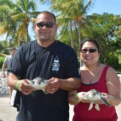 November 2015  Cayman Islands