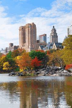 Central Park, New York City - USA