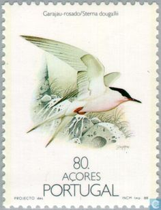 Portugal Stamp 1988 - Azores - Birds