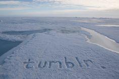 tumblr at the North Pole..... lol. Tumblr. http://laurenfarmer.com/