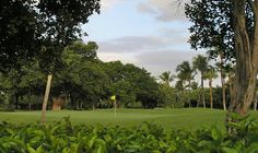 The Hammock Golf Course at Ocean Reef Golf Club in Key Largo Florida