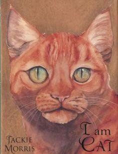 I Am Cat   Siop Y Ganolfan