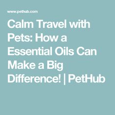 Calm Travel with Pets: How a Essential Oils Can Make a Big Difference! | PetHub