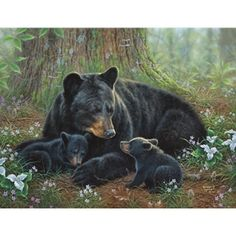 Diamond Painting Bear Family in the Woods Kit Bear Paintings, Wildlife Paintings, Wildlife Art, Animals And Pets, Baby Animals, Cute Animals, Photo Ours, Art D'ours, Bear Drawing