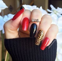 Leopard n red