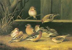 """""""Peippoja ja urpiaisia"""" 1868 Ferdinand von Wright"""