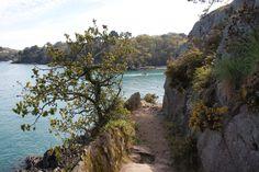 Port Mer, non loin de Cancale
