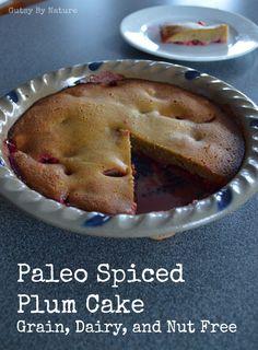 Spiced Paleo Plum Cake - Gutsy By Nature