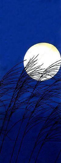 月にススキ Miscanthus sinensis