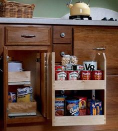 base blind corner with swingout pantry