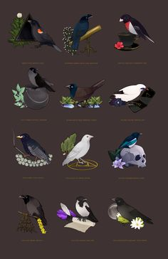 Here is all my magical birds in one post!You can get the 2016 calendar featuring these burbs on my Etsy!