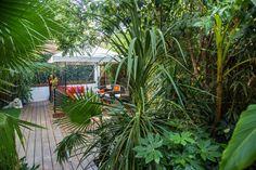 #plantation #jungle #arbre #palmier #jardin #aménagement #extérieur #paysagiste #pa #provence #outdoor Plantation, Provence, Images, Plants, Gardens, Garden Design, Landscape Planner, Flora, Plant
