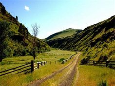 Lightning Creek, near Imnaha, Oregon. The late, great Walter Brennan had a large ranch up this canyon and when my brother moved out to live and work there, I hated him.
