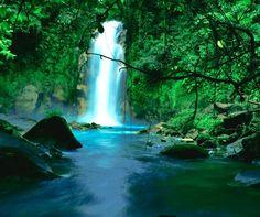 Costa Rica Honeymoon, Rio Celeste Hideaway Hotel, Affordable Honeymoon, Hotel Package || Colin Cowie Weddings
