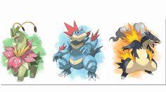 Epic mega starter pokemon. Fan art.