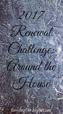 2017 Renewal Challenge: Around the House