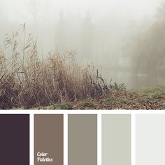 Color Palette #3147