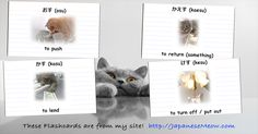 Practice these flashcards in their plain form at: JapaneseMeow.com