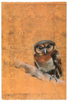 Owl on Tapestry, pastel on mmonotype