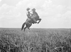 Vintage bucking bronco photograph.