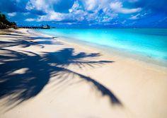 """SUN-BELIEVABLE""""En la playa, la vida es diferente, el tiempo no se mueve de hora en hora sino de humor a momento.  Vivimos por las corrientes, planeamos por las mareas y seguimos el sol."""