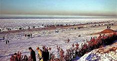 De winter van 1963 was de koudste van de eeuw: over drie maanden had De Bilt een gemiddelde temperatuur van -3,1  graden (+2,6 grad... The Hague, Vintage Pictures, Holland, Amsterdam, Dutch, Memories, City, Places, Outdoor