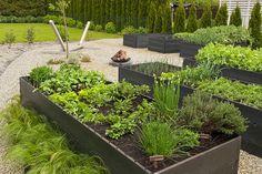 Jak Zrobić Ogród Warzywny Pergola, Plants, House, Gardens, Home, Outdoor Pergola, Outdoor Gardens, Plant, Homes