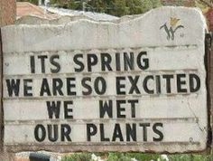 wet our plants