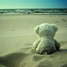 BEAR - stuffed teddy bear