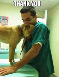 Just Dog Stuff... Real men are kind to animals ♥