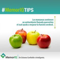 Queremos recomendar las manzanas y sus bondades, son súper útiles para nuestro cerebro. ¡Feliz viernes! #MemorIQ Un Sistema Confiable e Inteligente.