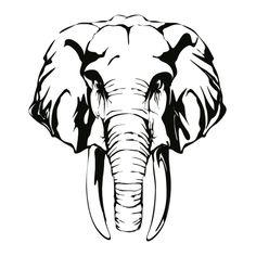 Wandtattoo Elefant - Bild 3