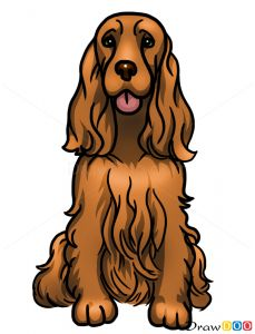How to Draw Cocker Spaniel, Dogs and Puppies обновлено: March 28, 2016 автором: