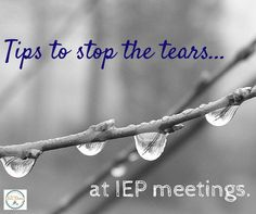 There's a time and a place to mourn our child's losses, but the IEP meeting is not it. Read these tips to be more organized, focused and in control and have a great IEP meeting.