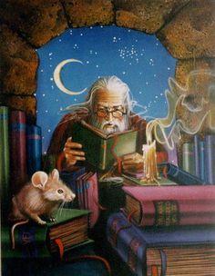 Wizard Reading