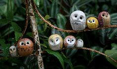 Pygmy Barn Owl Harry Potter Inspired Owlery by calicoowls on Etsy