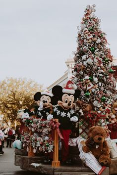 Disneyland Christmas ❁ @andisakowski