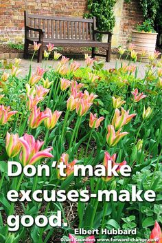No excuses. http://www.forward-change.com/products/88-products/139-4i-s-success-strategy-inspiration