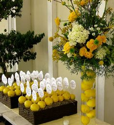 The welcome table was decorated with a lemon-filled vase of flowers ...