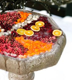 fun way to feed birds. Based on a French floral design technique called pavé, natural ingredients squeezed close together: kumquats, cranberries, pepper berries. Ice Sculptures, Sculpture Ideas, Decorating With Pictures, Yard Design, Winter Garden, Winter Porch, C'est Bon, Winter Holidays, Garden Projects