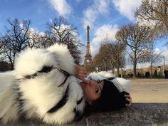 Paris tour eiffel fur coat