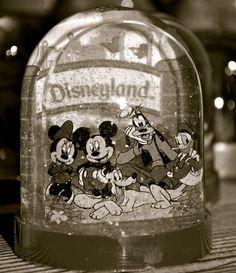 Love Disneyland