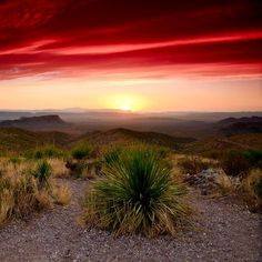 Sunrise over Big Bend Texas. These colors are insane! This is going to be great West Texas, Texas Usa, Beautiful World, Beautiful Places, Go Camping, Outdoor Camping, Camping Hacks, Photos Voyages, Le Far West