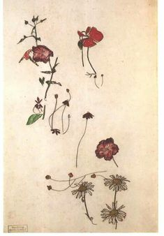 E g o n - S c h i e l e Study with flowers Unknown date Stamp bottom left Source/Photographer Reprography from art book