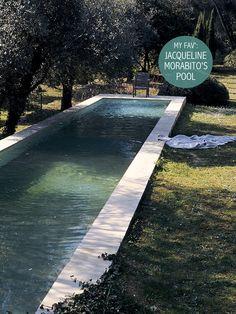 Ambiente meio selvagem à volta da piscina?