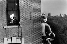 Elliott Erwitt     Macy's Thanksgiving Day Parade, New York City     1988