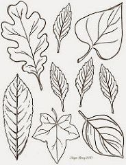 Free Printable Images Of Fall Leaves Autumn Leaves Free Printables Clip Art Printables Welcome To Fall Printables Activities Fall Crafts For Free Fall Leaves Printables Homeschool Giveaways Felt Flowers, Paper Flowers, Leaf Template, Templates, Wood Burning Patterns, Cool Ideas, Leaf Art, Colouring Pages, Leaf Coloring