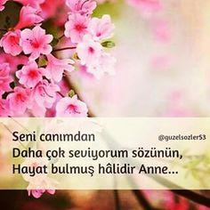 Anne'm.♡ ......