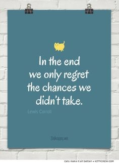Motivational cat quote - What we regret (more @ Kittycrew.com)