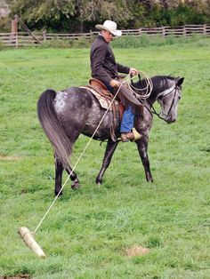Build Your Horse's Confidence with jonathan field, natural horsemanship, exercises with horses, jonathan field dragging a log, horse confidence Horse Training Tips, Horse Tips, Horse Exercises, Natural Horsemanship, Equestrian Outfits, Equestrian Fashion, Equestrian Style, Barrel Horse, Horse Care